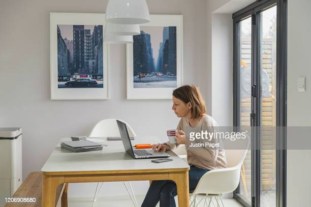 freelancer working from home - using laptop stock pictures, royalty-free photos & images