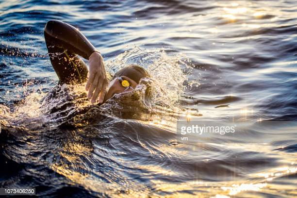 freestyle swimming in a sun lit sea - swimming stock pictures, royalty-free photos & images