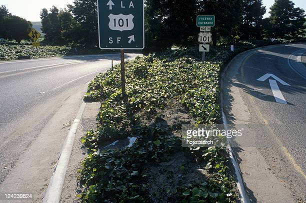A 101 Freeway sign in California