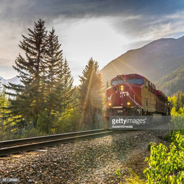 Freight train rumbles down track in mountains, sun