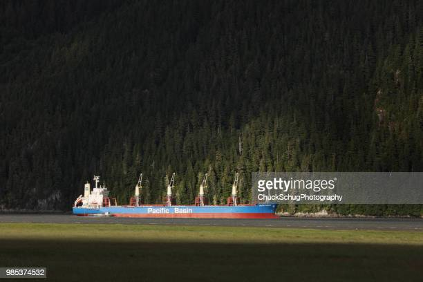 freighter cargo ship sailing alaskan waterway - golfo do alasca imagens e fotografias de stock