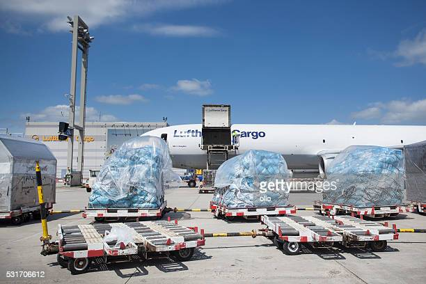 md-11 freighter of lufthansa cargo - cargo airplane stock photos and pictures
