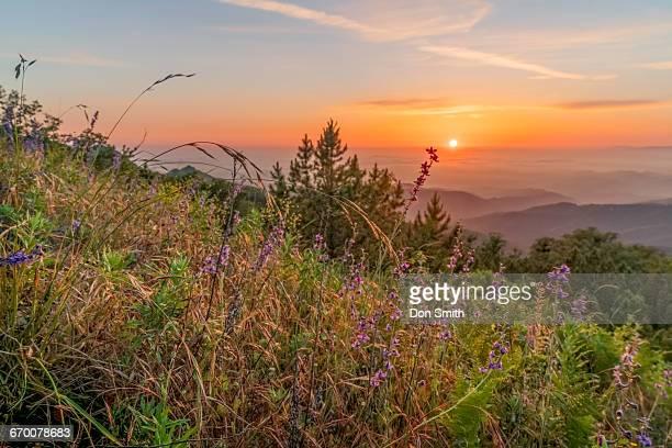 fremont peak sunset - don smith stock-fotos und bilder