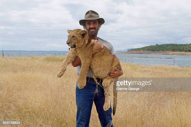 French actor JeanPaul Belmondo with a lion cub on the set of Itineraire d'un enfant gate directed by Claude Lelouch Belmondo won the 1989 Cesar award...