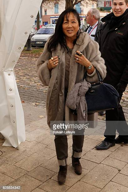 French actress and jury member of Russian Film Festival MeiChen Chalais arrives for a screening on November 22 2016 in Honfleur France