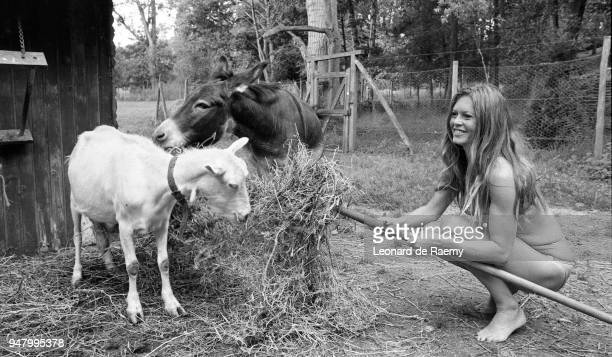 French actress Brigitte Bardot feeds goats at her home in Bazoches near Paris 01st June 1975
