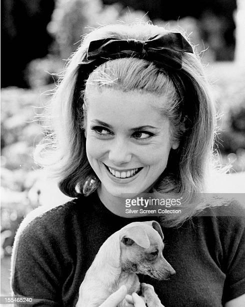 French actress Catherine Deneuve holding a puppy circa 1962