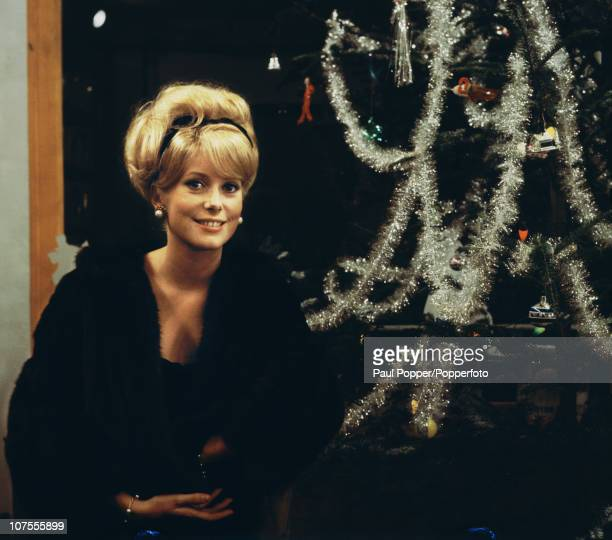 French actress Catherine Deneuve sitting by a Christmas tree 1963