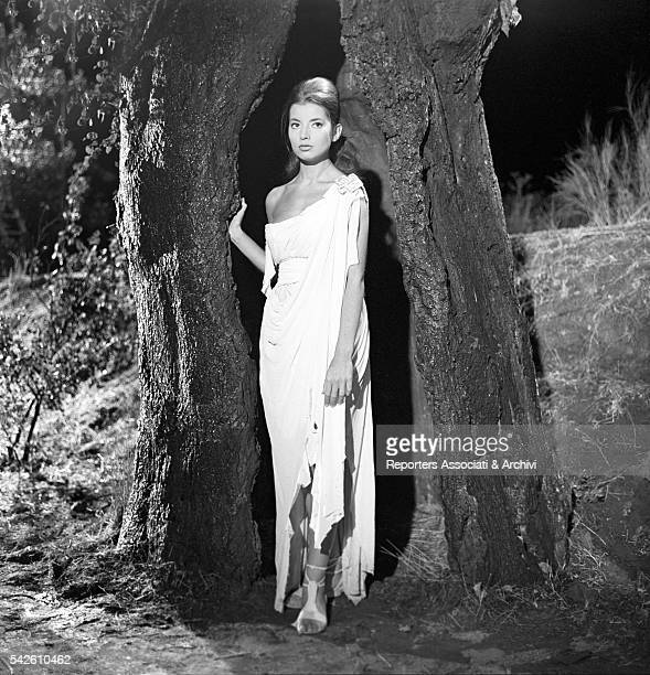 French actress Jacqueline Sassard in a hollw tree in My Son the Hero 1961