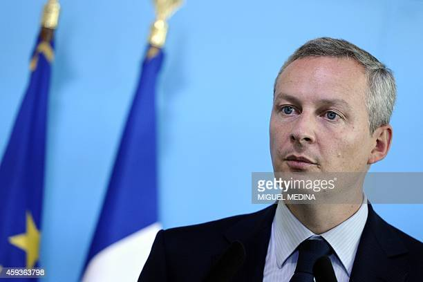 French Agriculture Minister Bruno Le Maire is pictured as he gives a press conference at his ministry in Paris on September 7 2011 following a...