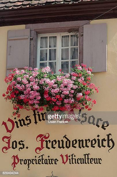 French and German Sign Under Flower Box