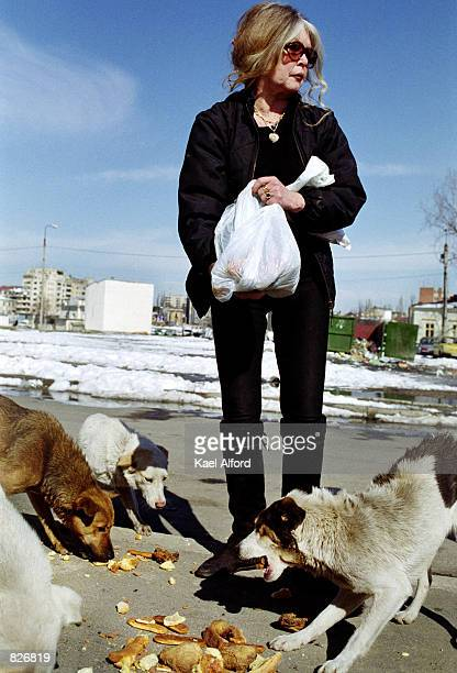 French animal rights activist and former actress Brigitte Bardot feeds bread to stray dogs March 2 2001 on a back street in Bucharest Romania Bardot...