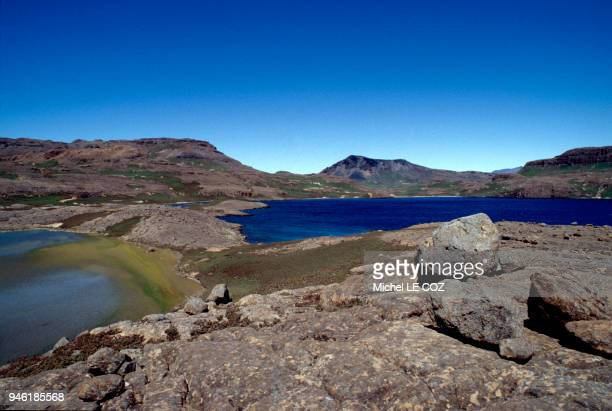 kerguelen islands stock photos and pictures getty images