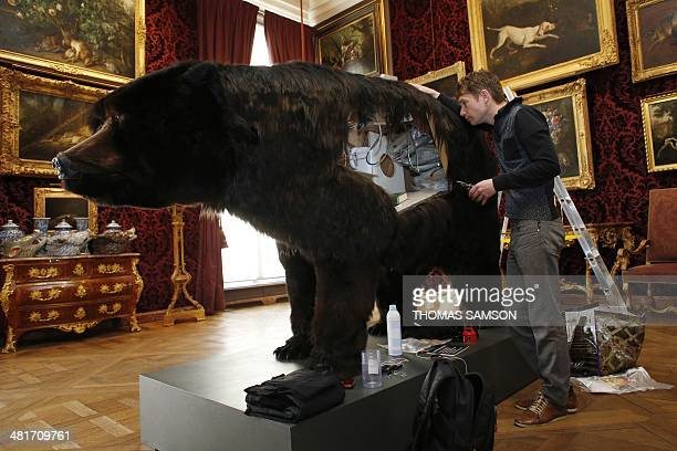 French artist Abraham Poincheval works on a fake bear on March 31 in Paris the day before starting an artistic performance in which he will spend...