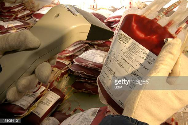 French Blood Bank In Bordeaux Distribution Department Entering Inventory Of Concentrated Red Cells Into Computer System Pouches Of Red Cells With...