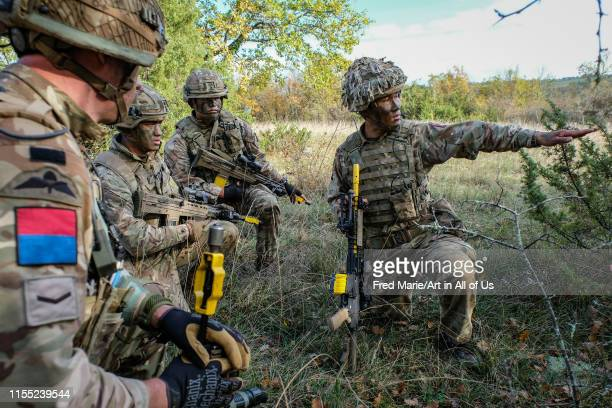 French british and american paratroopers training together in south of France forest for the Falcon Amarante mission Occitanie Caylus France on...