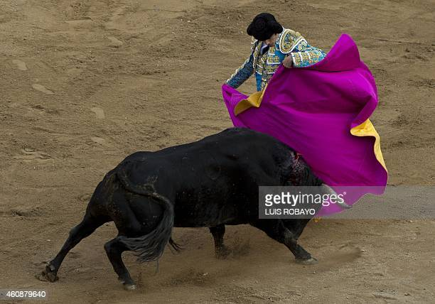 French bullfighter Sebastian Castella performs at the Canaveralejo bullring in Cali department of Valle del Cauca Colombia on December 28 in the...
