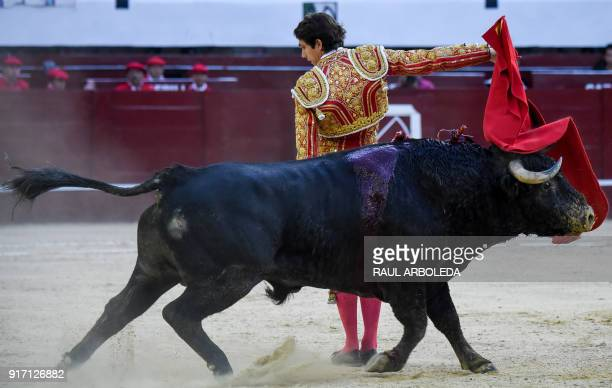 French bullfighter Sebastian Castella performs during a bullfight at La Santamaria bullring in Bogota on February 11 2018 The Colombian...