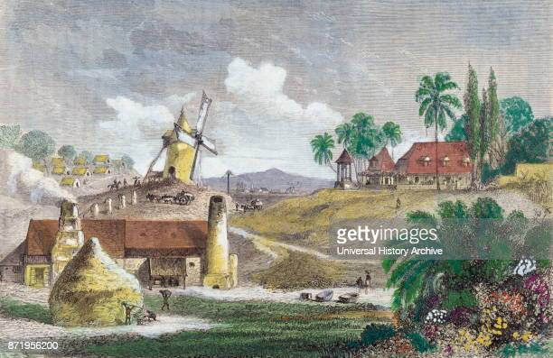 French colonial sugar plantation in Martinique West Indies 1830