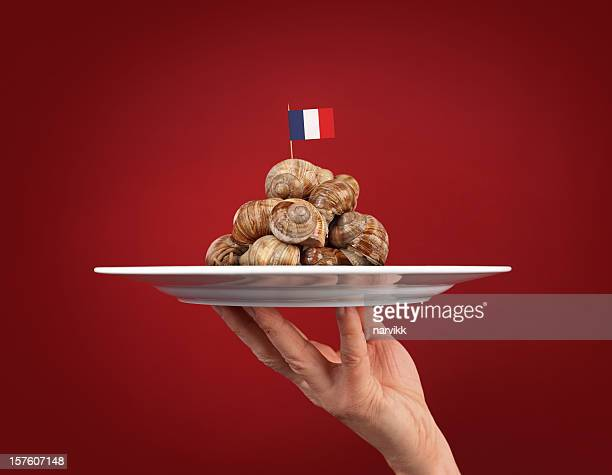 french cuisine - snail stock pictures, royalty-free photos & images