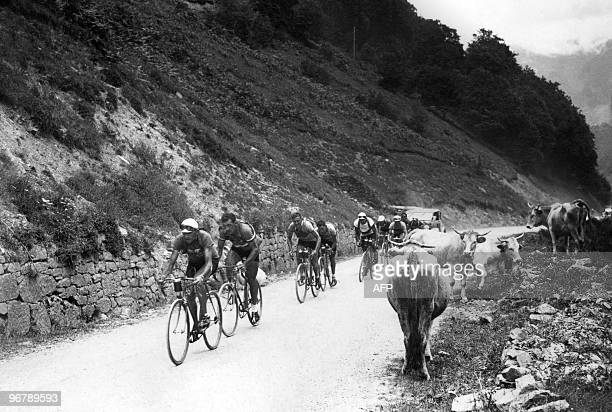 French Cyclists Antonin Magne Guy Lapebie and Belgian Felicien Vervaecke climb the mountain pass of Tourmalet on July 23 1934 during the 18th stage...