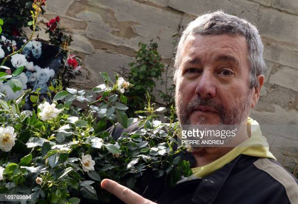 French designer Philippe Starck poses on June 1 2013 with the Philippe Starck rose created by Andre Eve Antique Roses during the 2013 Jardins Jardin...
