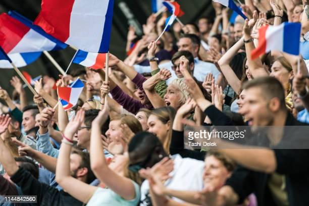 ventilateurs français avec des drapeaux ondulant - french football photos et images de collection