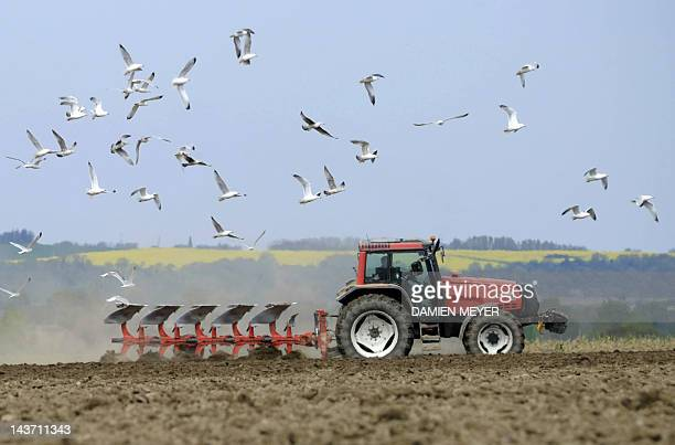 A French farmer ploughs a field on April 14 2011 near Plancoet western France AFP PHOTO DAMIEN MEYER
