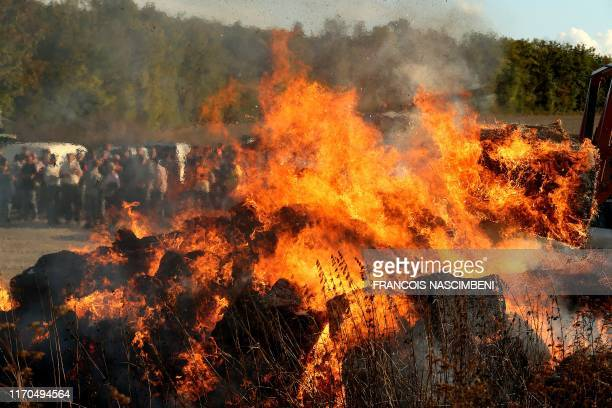 French farmers set fire to straw bales on September 23 2019 in WitrylesReims north of Reims as part of the operation named let's light the fires of...