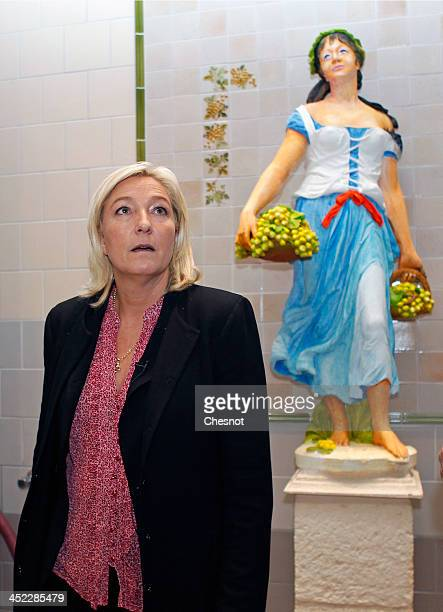 French farright National Front's Leader Marine Le Pen is seen during her visit to a winemaker at a vineyard on November 27 2013 in Sens France