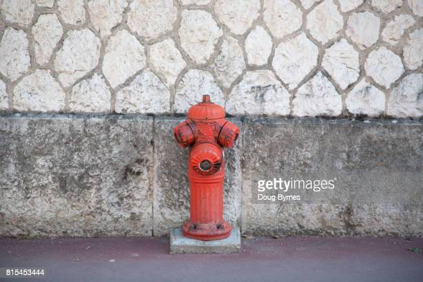 French fire hydrant