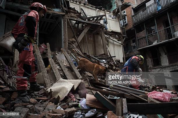 French firemen with a rescue dog look for earthquake survivors among debris in the Nepalese capital Kathmandu on April 28 2015 Hungry and desperate...