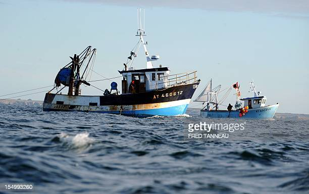 French fishermen fish scallops after a threeyear ban on October 30 2012 off Quiberon western France British and French officials were locked in talks...