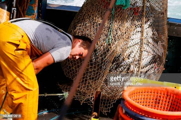 French fishermen Victor 21yearsold empties the nets onboard the Nounoute trawler during their 17hours fishing trip on July 31 2018 off the coast of...