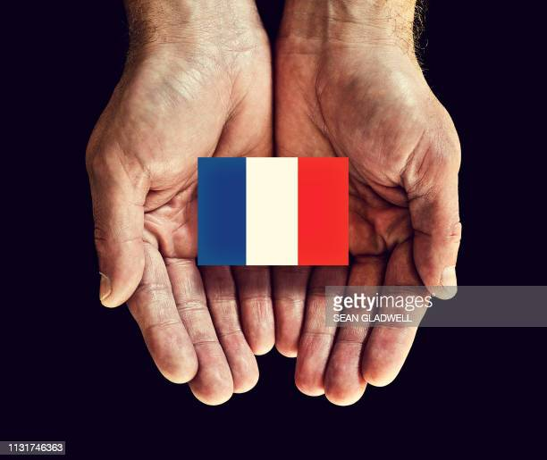 french flag in hands - démocratie photos et images de collection