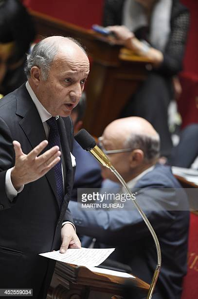 French Foreign Affairs minister Laurent Fabius speaks during a session of questions to the government on July 23 2014 at the National Assembly in...