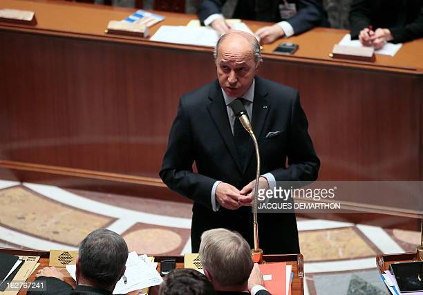 French Foreign Affairs Minister Laurent speaks during a session of questions to the government on February 20 2013 at the National Assembly in Paris