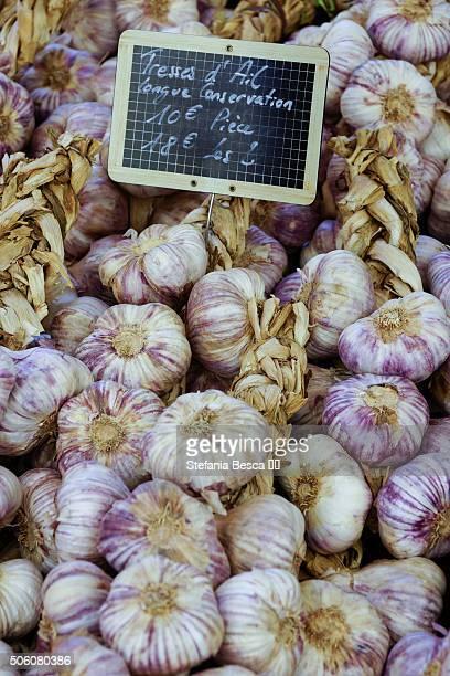 french garlic early purple wight - アルプドオートプロバンス県 ストックフォトと画像
