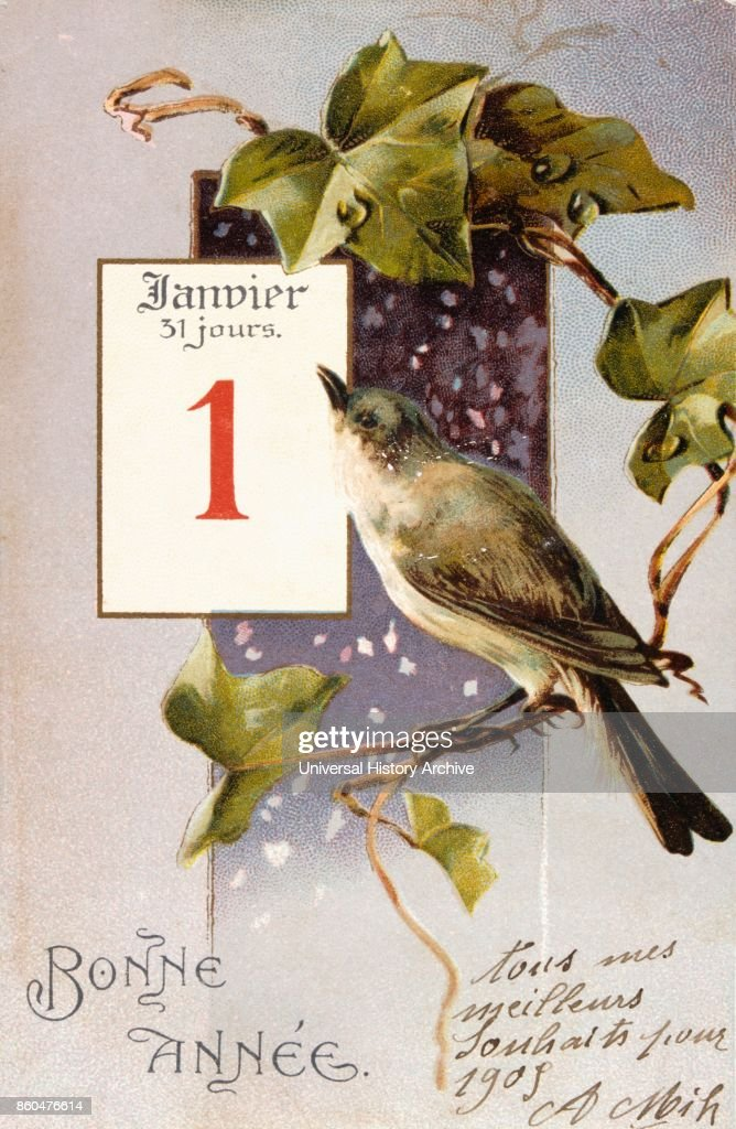 french happy new year postcard depicting a bird on a branch circa 1900