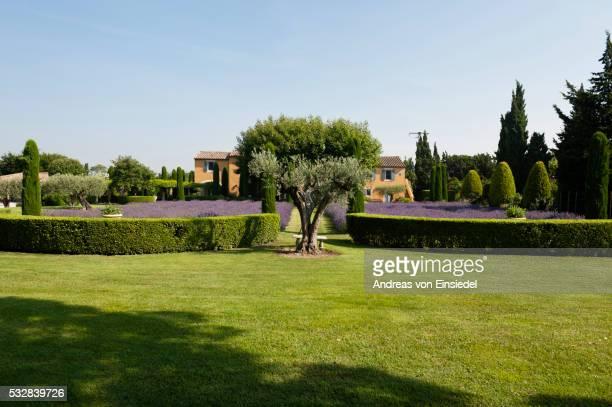 french holiday home in provence - jardin de la maison photos et images de collection