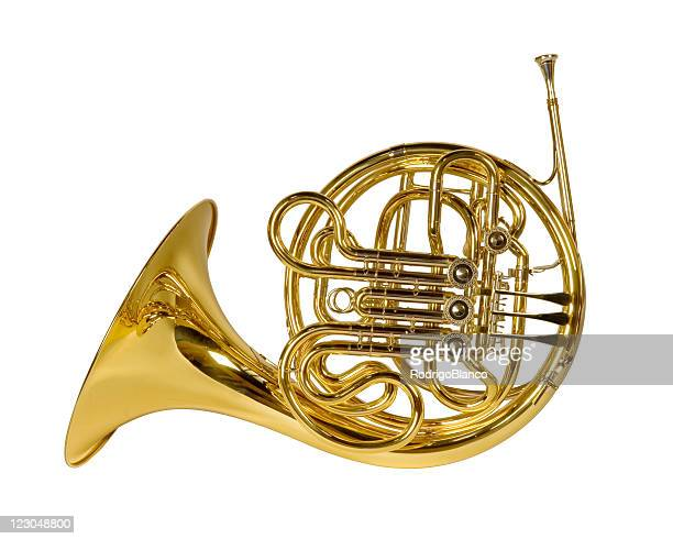 french horn - brass stock pictures, royalty-free photos & images