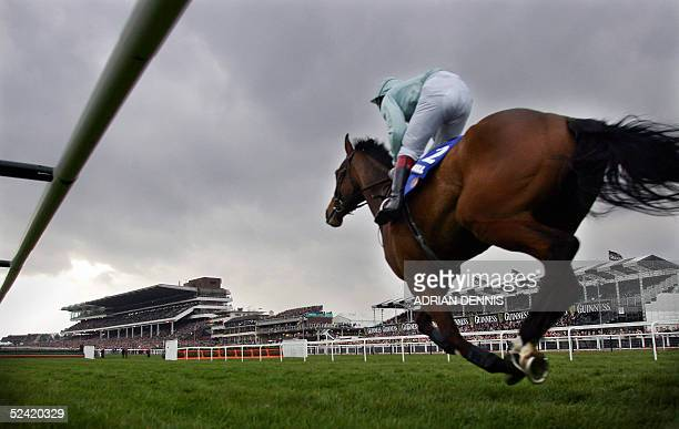 French horse Jakari ridden by Richard Johnson rides down the home straight during The William Hill Trophy Handicap steeple chase Class A Grade 3 race...