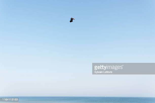 French hoverboard star Franky Zapata takes to the air to cross the Channel from France to England using the hoverboard invention on July 25, 2019 in...
