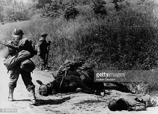 French infantrymen stand near a French soldier and his mule who were kill by a German shell on the road to Monticelli Italy during World War II |...