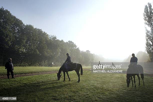 French jockey coach Bruno Bioune rides during a three days training session prior to the Qatar Prix de l'Arc de Triomphe horse race on October 1 2014...