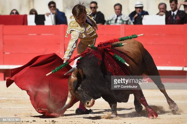 French matador Andy Younes makes a muleta pass on a Nunez del Cuvillo fighting bull on September 16 2017 during the Nimes Vendages Feria in Nimes...