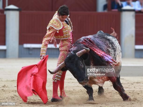 French matador Sebastian Castella performs a pass on a bull during the Fall bullfighting festival at Las Ventas bullring in Madrid on September 29...