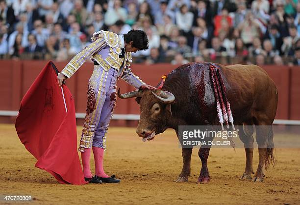 French matador Sebastian Castella touches the bull's head during a bullfight at the Maestranza bullring in Sevilla on April 22 2015 AFP PHOTO/...