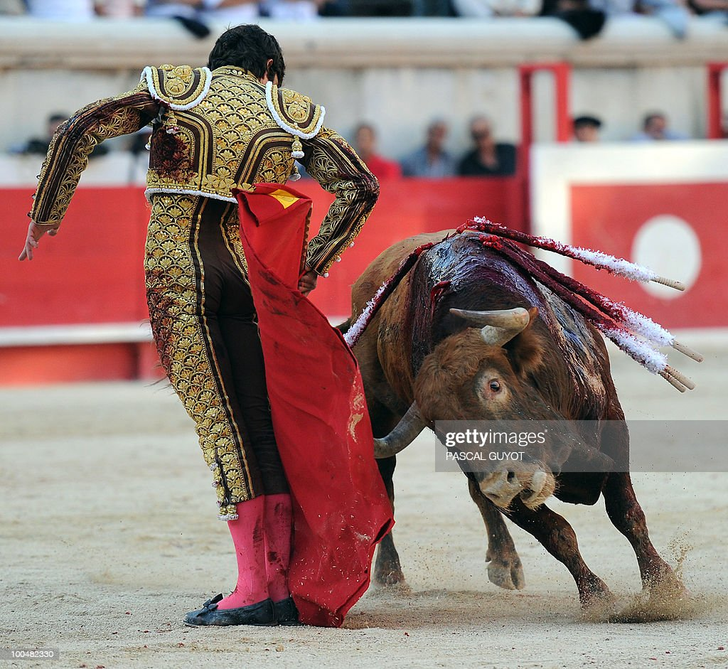 French matador Sebastien Castella performs a muleta on a Nunez del Cuvillo bull, on May 24, 2010 during the Nimes' Pentecost Feria, southern France.