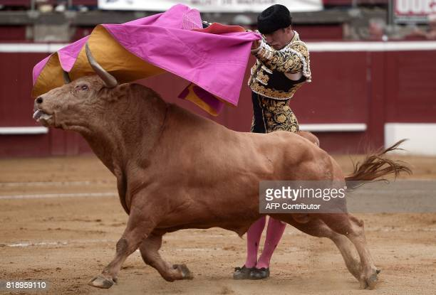 TOPSHOT French matador Thomas Dufau fights a Juan Pedro Domecq bull at the Plumacon Arena in MontdeMarsan during the Festival of La Madeleine in...